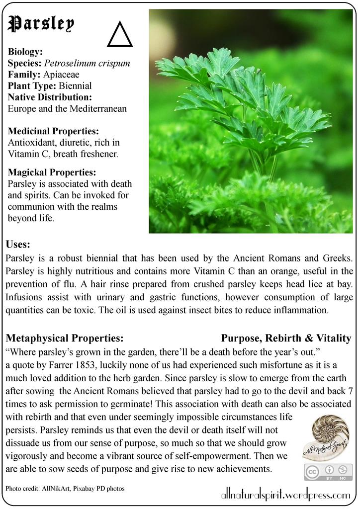 parsley, herbal, lore, meaning, properties, healing, medicinal, materia, medica, plant, guide, metaphysics, oracle, card