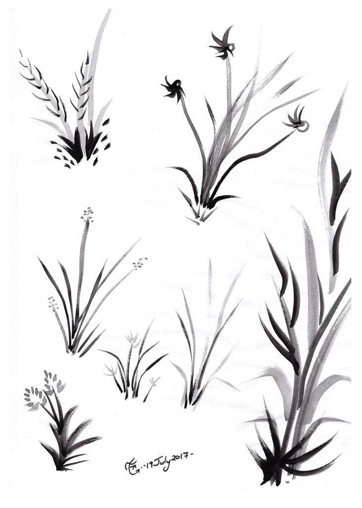 Grasses, Japanese Ink Wash Technique, Sumi-e, All Natural Spirit, Suiboku, Suibokuga, The Four Gentlemen