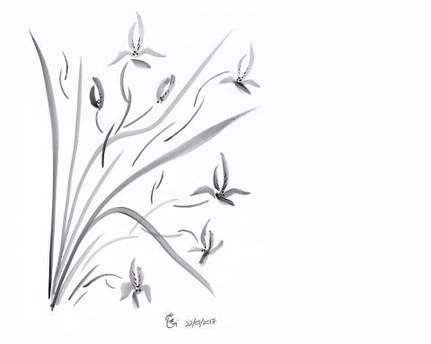 Orchid, Japanese Ink Wash Technique, Sumi-e, All Natural Spirit, Suiboku, Suibokuga, The Four Gentlemen