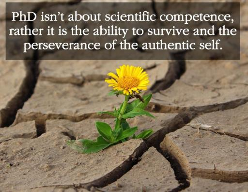 PhD isn't about scientific competence, rather it is the ability to survive and the perseverance of the authentic self allnaturalsppirit.wordpress.com publish or perish