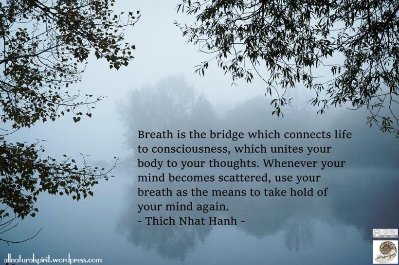 River Fog trees silhouette air breath breathe meditation march autumn equinox - Copy