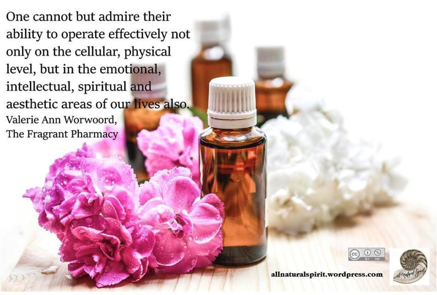 Aromatherapy #1: Morning & Night Meditation BlendRecipes
