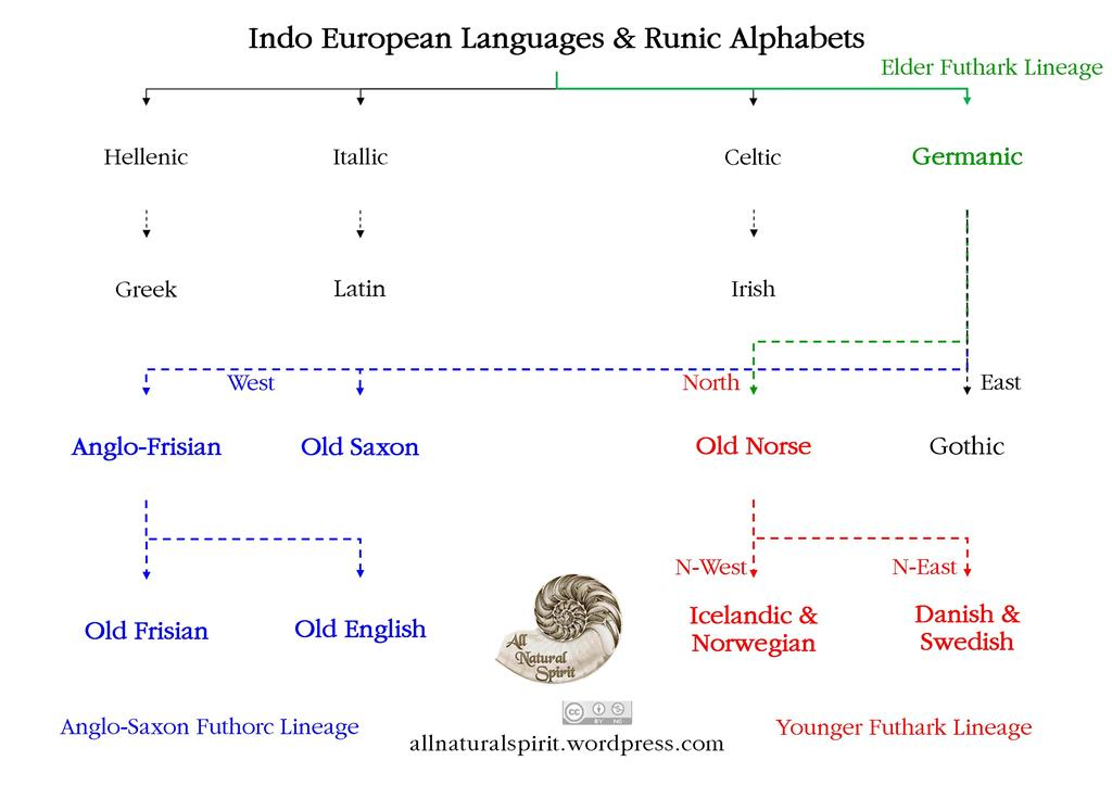 Indo European Languages and the Runic Alphabets, Elder Futhark, Anglo-Saxon Futhorc, Younger Futhark, Lineage