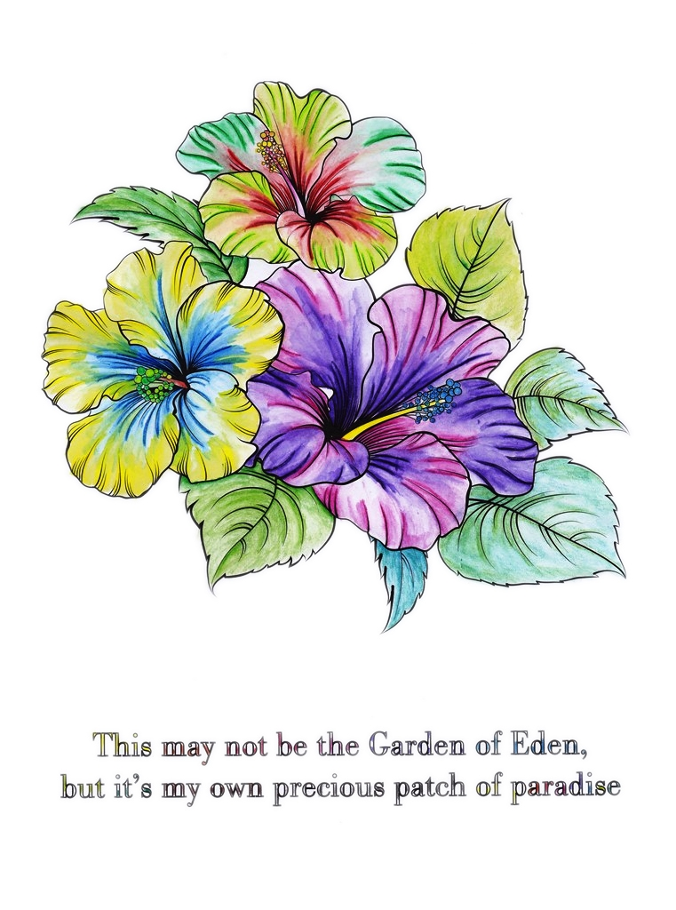 Quote, Hibiscus, Flower, Floral, Flora, Art, Design, Free, Wallpaper, hand colored, hand coloured, Background, Download, Mobile, Desktop