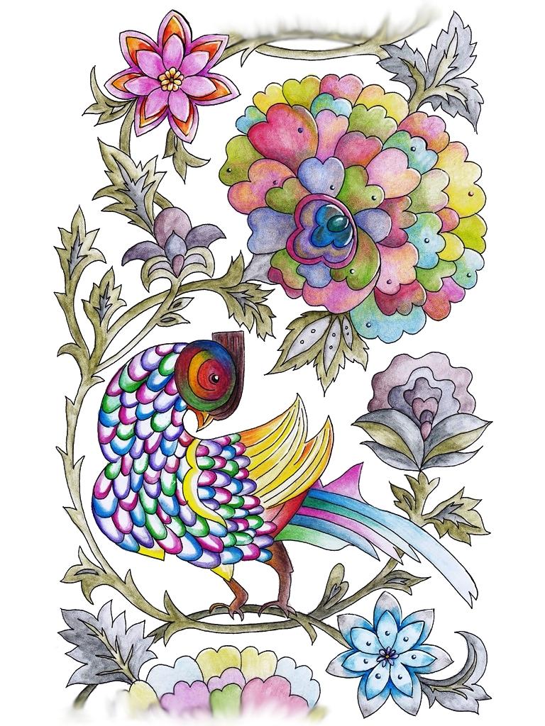 Bird, Pheasant, Fauna, Animal, Art, Design, Free, Wallpaper, hand colored, hand coloured, Background, Download, Mobile, Desktop