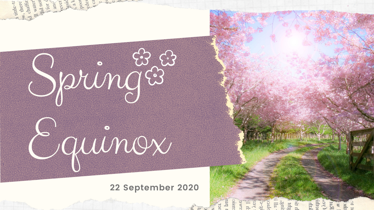 Spring Equinox, 2020, blossoms, spring, flowers, pink
